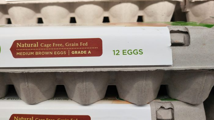 carton-of-eggs
