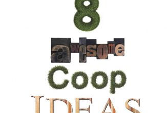 Coop Inspiration: 8 Awesome Coop Ideas