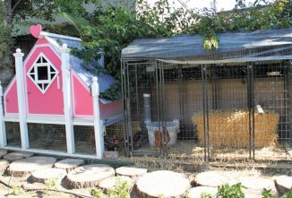 The Barbie Dream House: A Very Cool Chicken Coop Idea