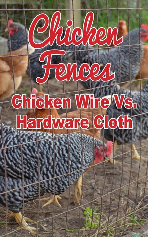 Chicken Fences