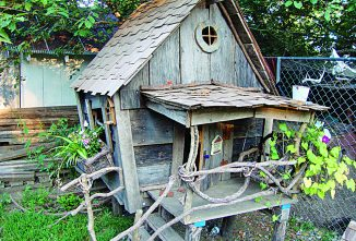 Chicken Coops Special Issue — Haunted Chicken Coop