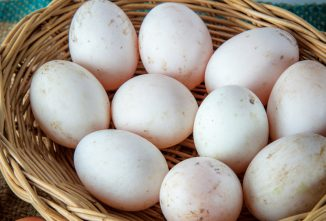Recipes: Using Duck Eggs