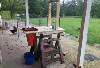 A DIY Chicken Cone Harvesting Station
