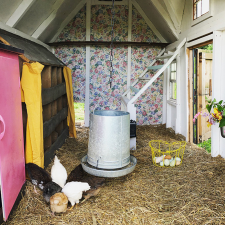 Blessings Chicken Coop