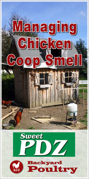 Manage Chicken Coop Smell
