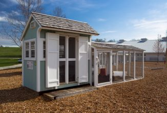 Coopitecture™ 101: Location, Space & Design of Your Chicken Coop