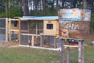A Water Tower Chicken Coop