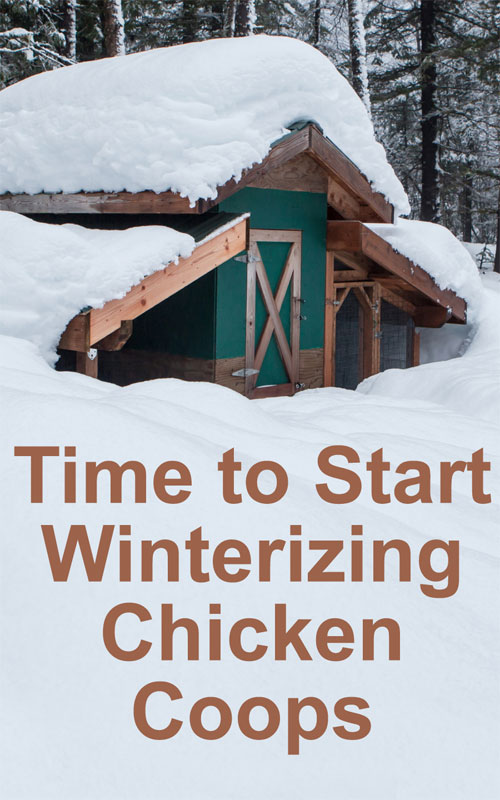 Winterizing Chicken Coops