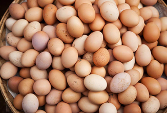 Average Dozen Eggs Price Decreases Dramatically in 2016