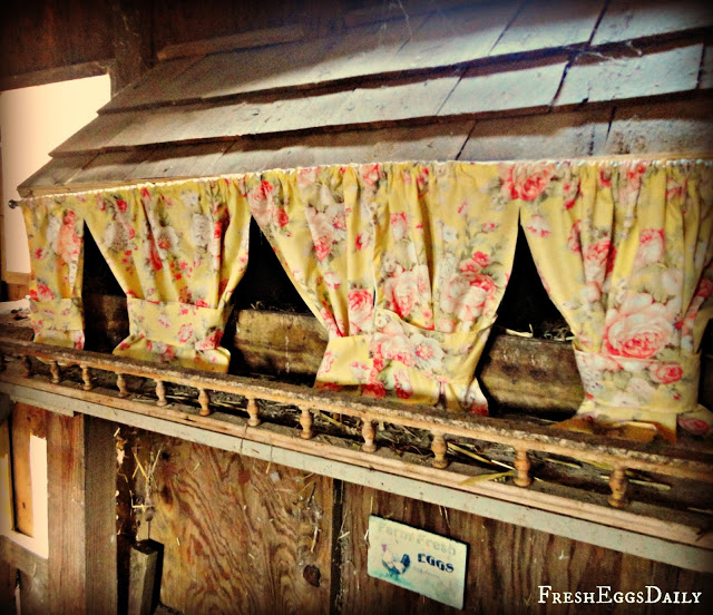 7 Reasons to Hang Chicken Nesting Box Curtains