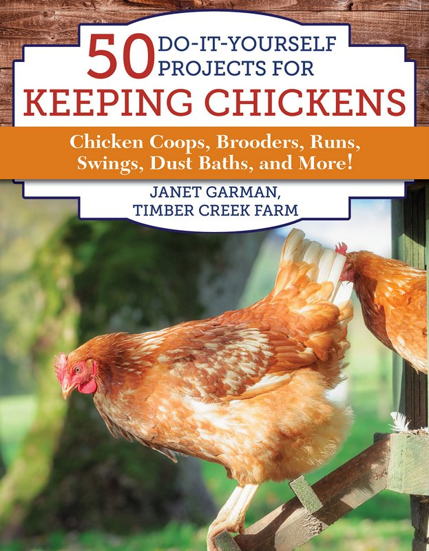 Pumpkin Treats Chickens Will Love for Cool Weather