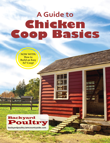 Chicken Housing: Chicken Coop Designs