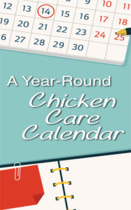 Chicken Care Calendar