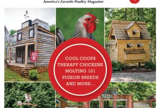 Backyard Poultry August/September 2017