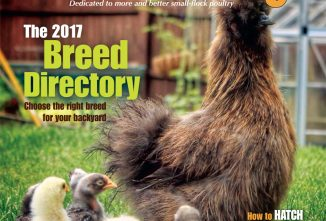 Backyard Poultry February/March 2017