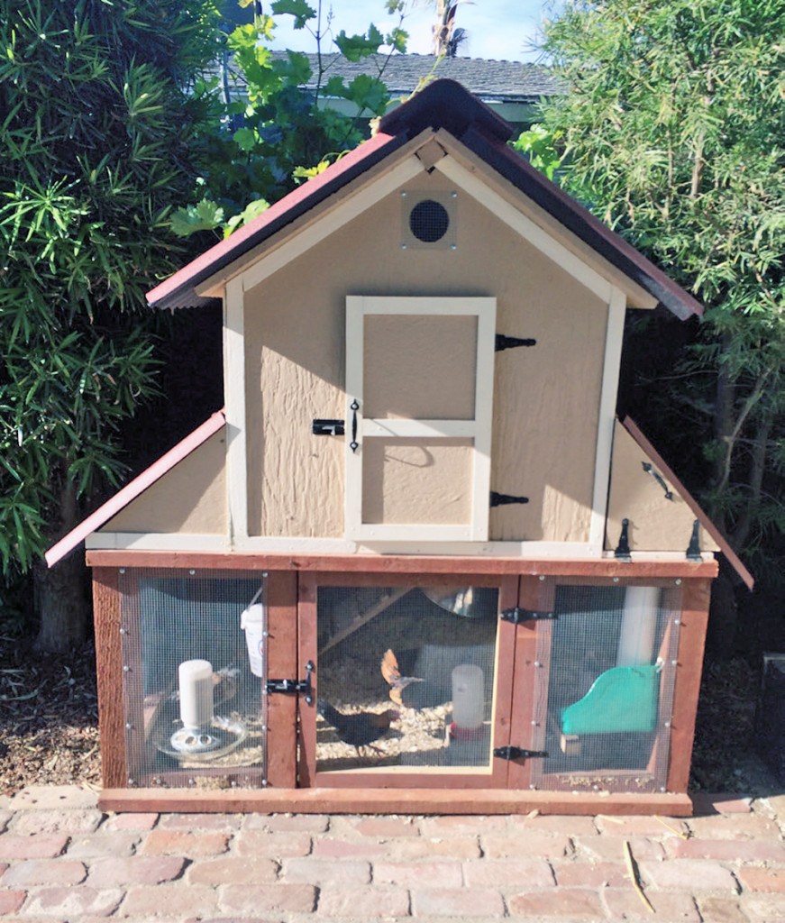 Chicken Coop Ideas