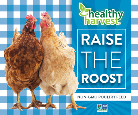 Healthy Harvest Poultry Feed