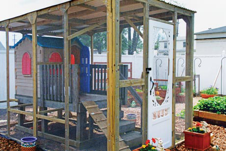 Kirche's Lil Chicken Coop is a modified Little Tikes playhouse that the kids have outgrown.