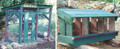 Thalia built this coop with wood from an old play structure. The nest box (right) was also made from the recycled wood. (Note: we don't recommend placing a roosting bar in front of the nest boxes, as it may encourage the hens to lounge about there and foul the nests.)