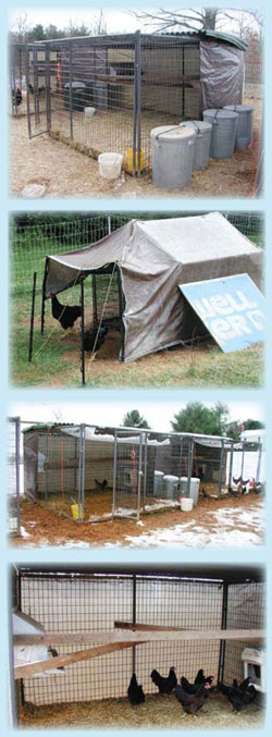 Ideal pens are not tight and heated, but rather are designed to protect from harsh winds, excessive sun, rain, and provide some sight barriers and cover for the home flock. These pens function beautifully in summer or winter. Notice even a propped sheet of plywood can be used to block snow or sun.