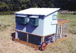 The chicken run is completely enclosed in poultry net. The door drops to form a ramp and awning window gives light and ventilation.