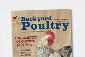 Backyard Poultry Print Subscription