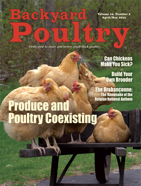 Backyard Poultry April/May 2015