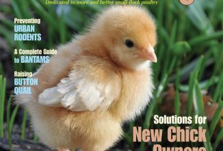 Backyard Poultry April/May 2016