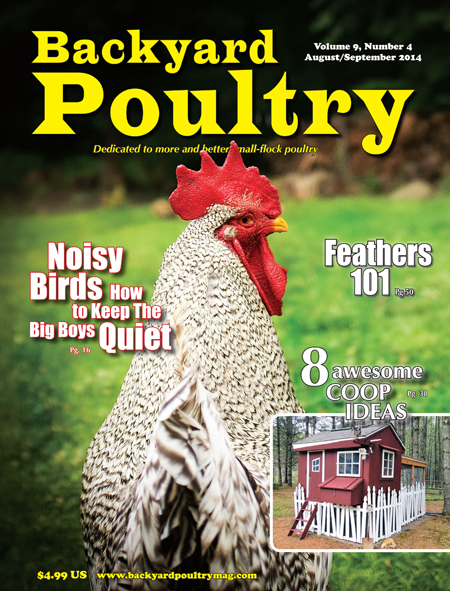 Backyard Poultry August/September 2014