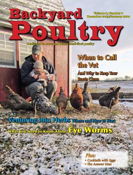 Backyard Poultry December 2013/January 2014