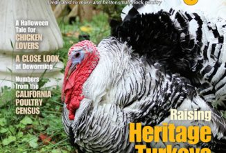 Backyard Poultry October/November 2016
