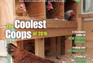 Backyard Poultry August/September 2016