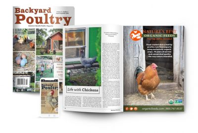 Backyard Poultry All-Access Membership