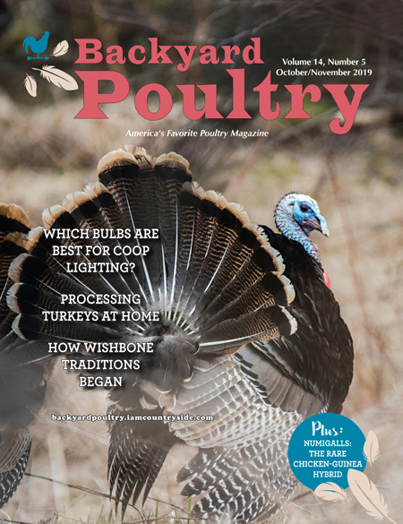 Backyard Poultry October/November 2019