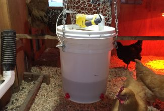My Inexpensive, Low-Energy,  Automatic Chicken Water Heater