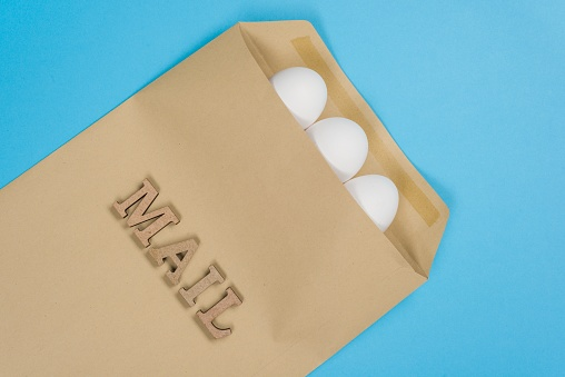 Ordering Hatching Eggs: Chickens First Class!