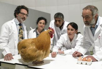 Will Chickens Make the Next Cancer Medicine?