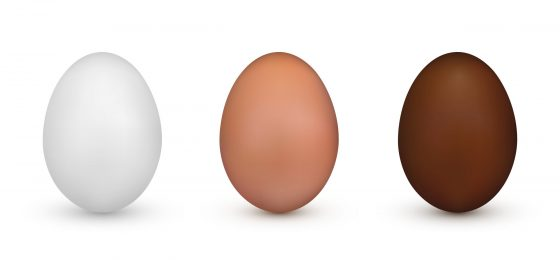 Brown vs. White Eggs