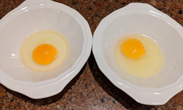 how-to-pasteurize-eggs-at-home