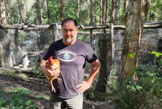 Poultry Homesteading Hacks for 2021