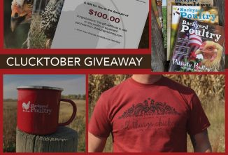 Clucktober Giveaway — Win Nearly $200 in Prizes