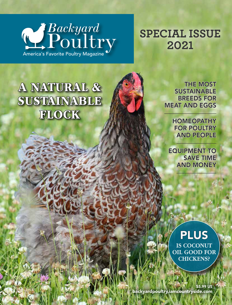 Ask the Expert – Special Issue 2021