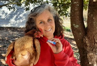 Homeopathy for Poultry and People